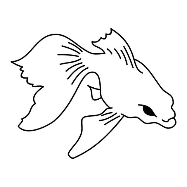 татуировки рыбы (6)
