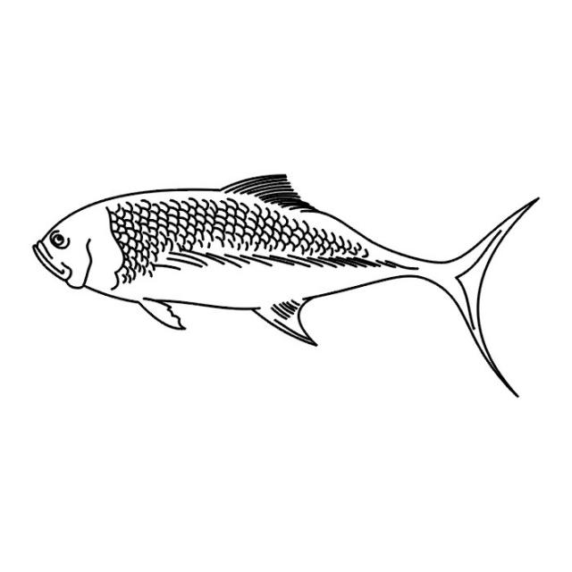 татуировки рыбы (5)