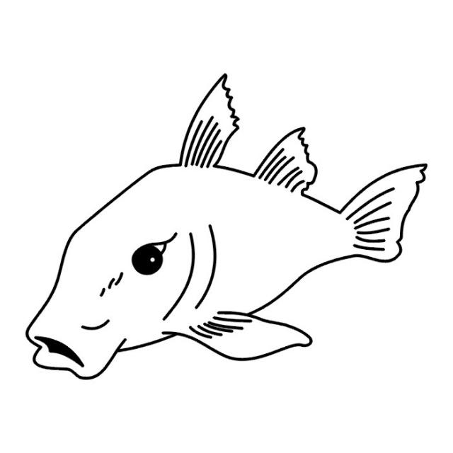 татуировки рыбы (4)