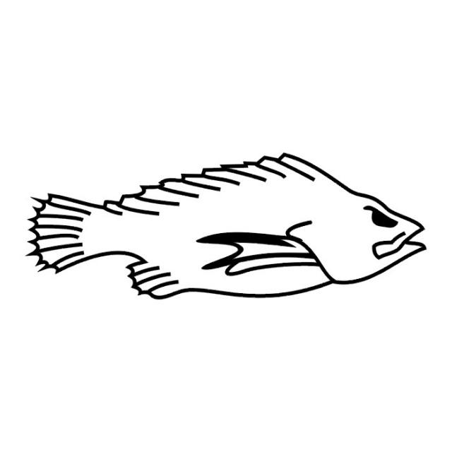 татуировки рыбы (2)