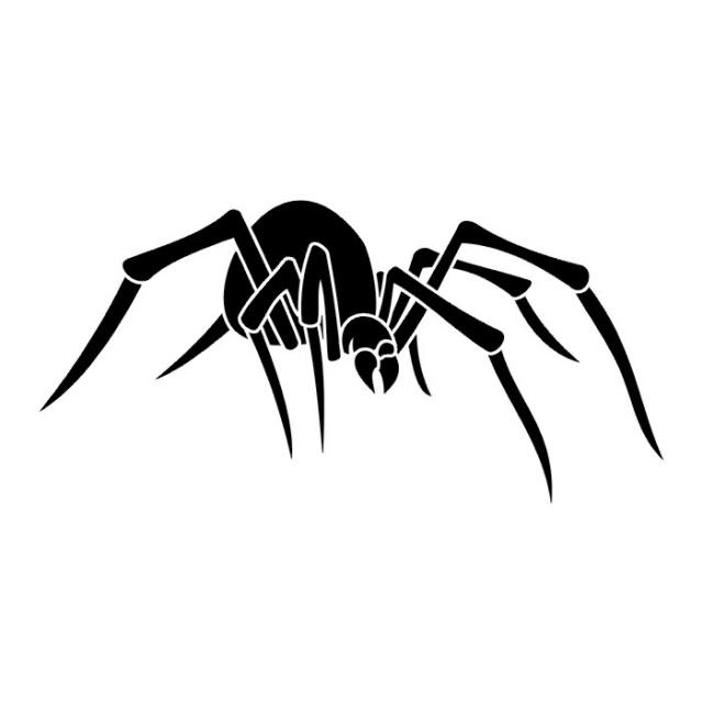 эскиз паука (10)