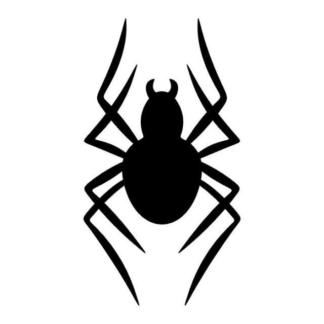 эскиз паука (11)