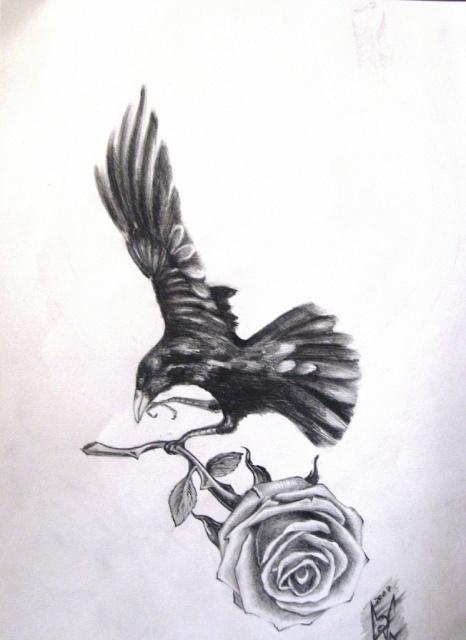 ворон тату (11)