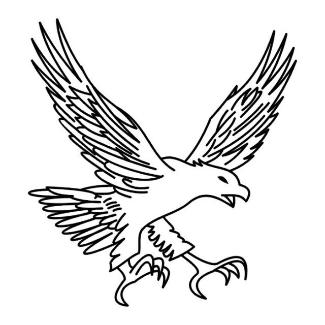 Птицы (30)