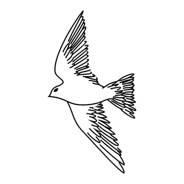 Птицы (18)