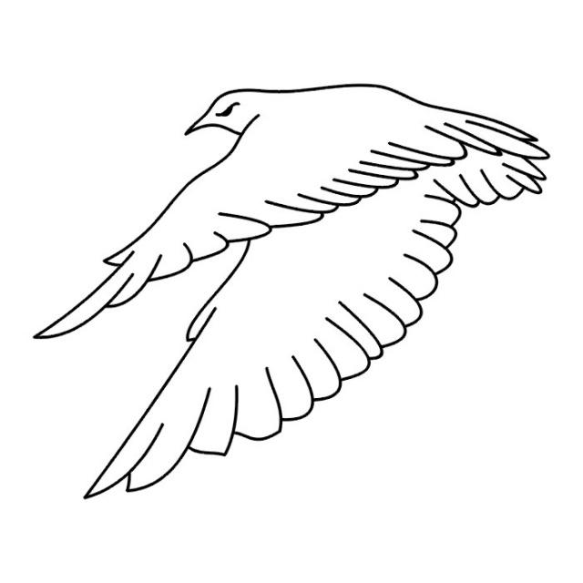 Птицы (14)