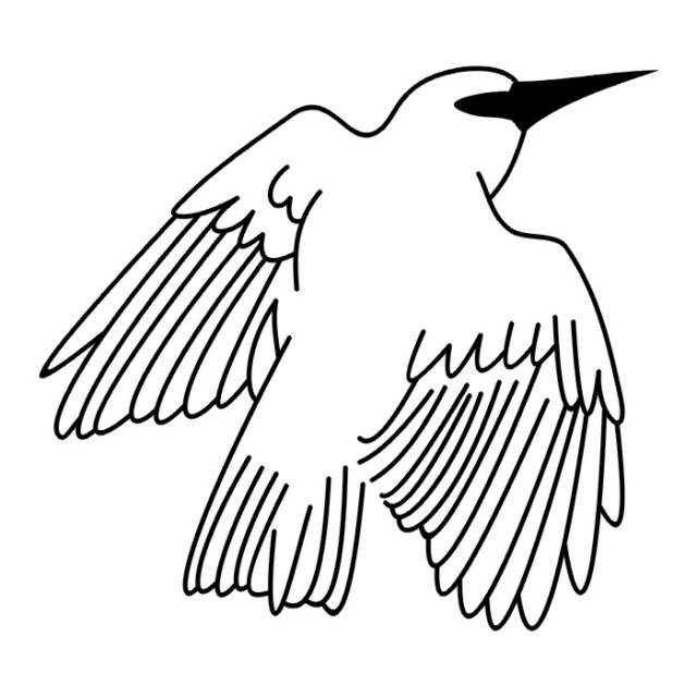 Птицы (29)
