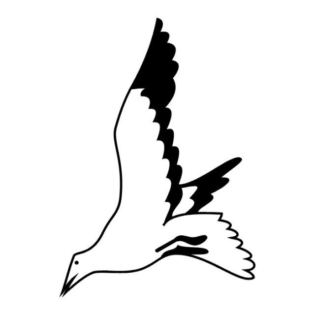 Птицы (2)