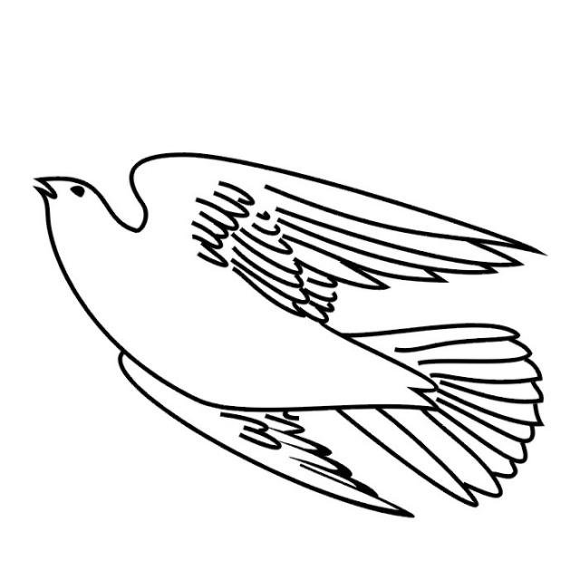 Птицы (26)