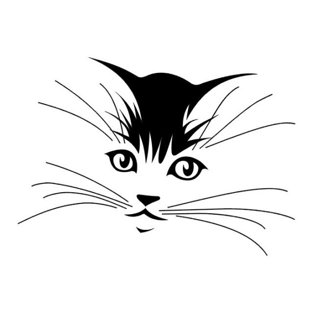 татуировка кот (6)