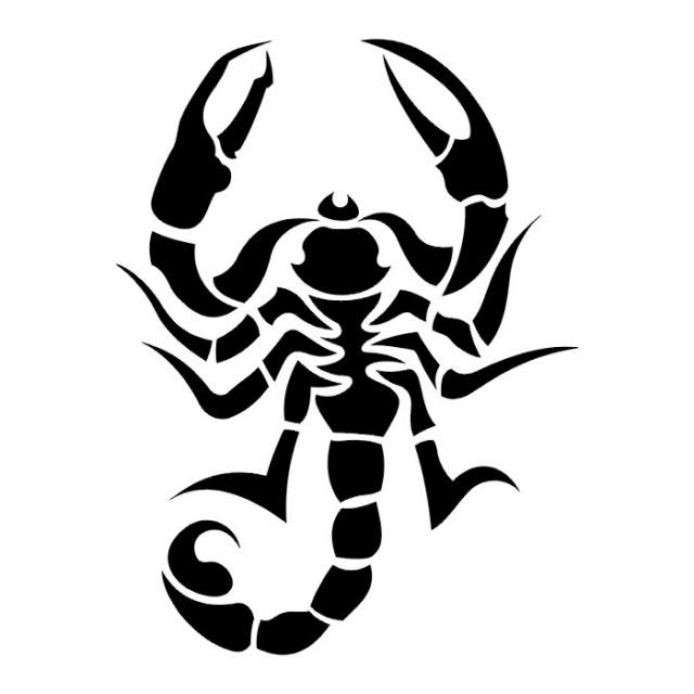 эскизы татуировки скорпиона  (12)