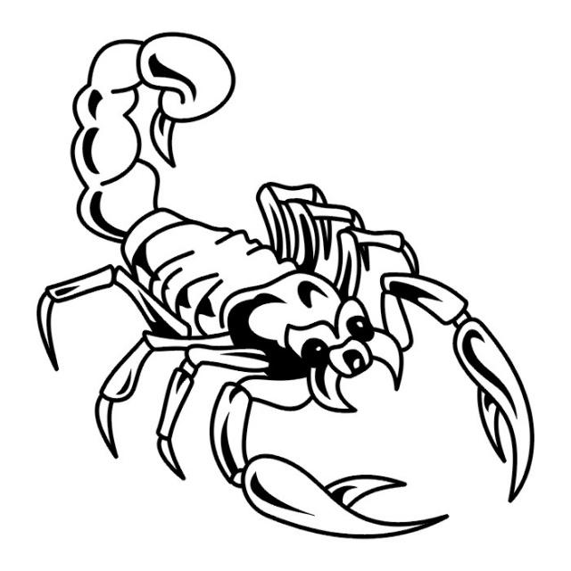 эскизы татуировки скорпиона  (3)
