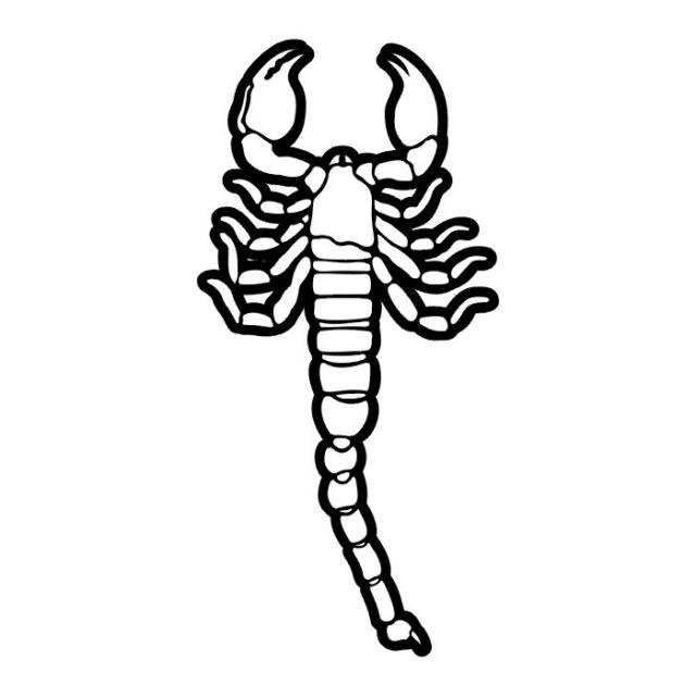 эскизы татуировки скорпиона  (6)
