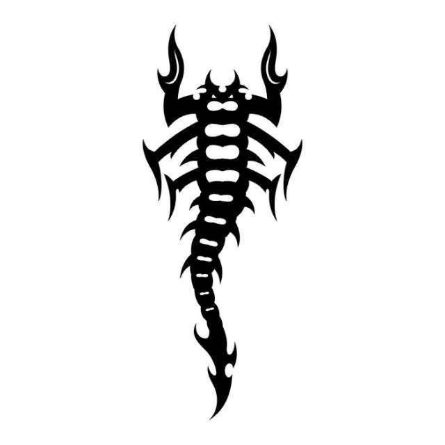 эскизы татуировки скорпиона  (8)