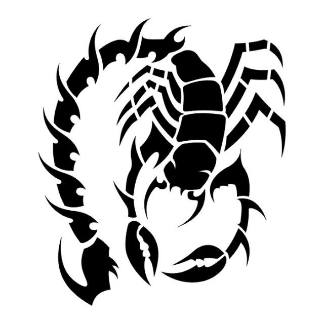 эскизы татуировки скорпиона  (9)