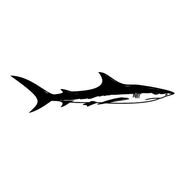 эскизы татуировок акулы (5)