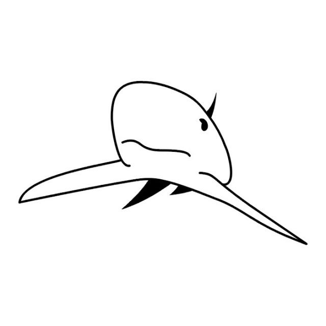 эскизы татуировок акулы (3)