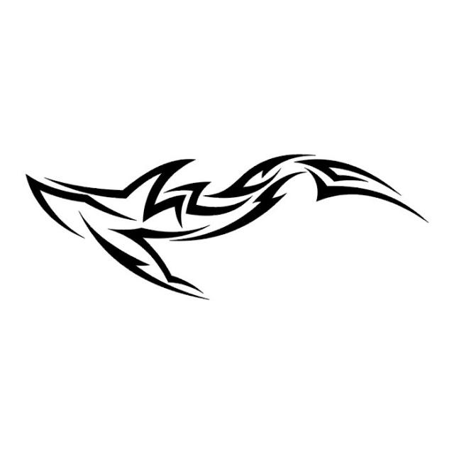 эскизы татуировок акулы (14)