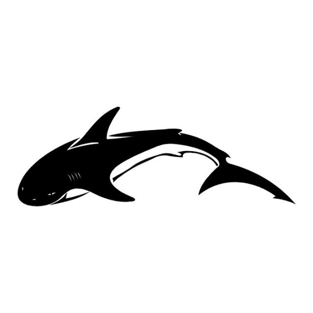 эскизы татуировок акулы (12)