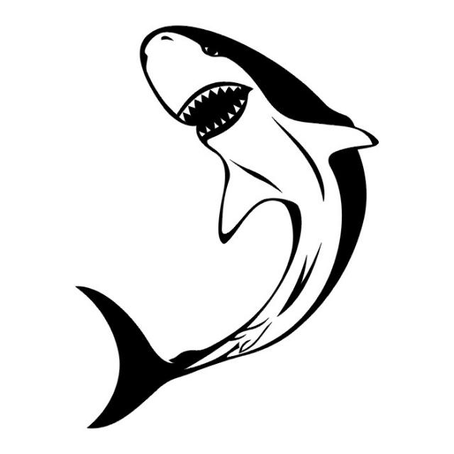 эскизы татуировок акулы (11)