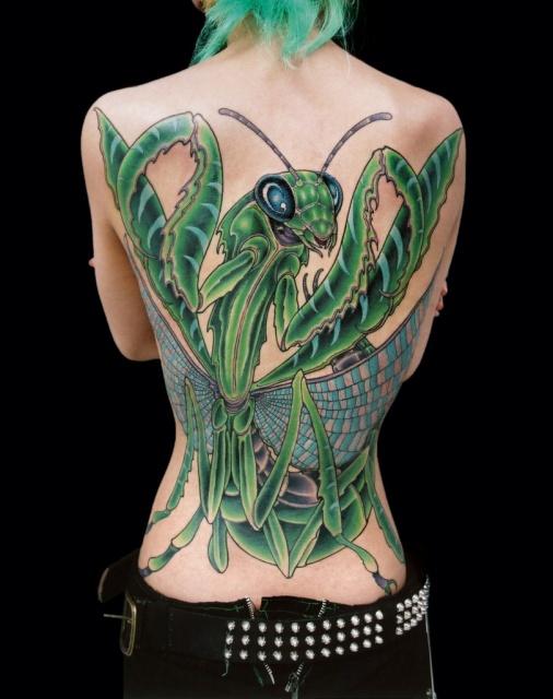 Зеленый богомол огромных размеров на женской спинке