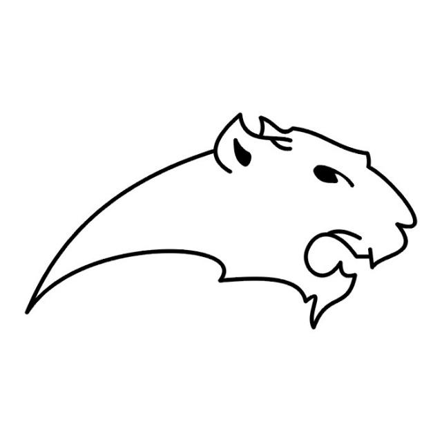 эскизы львов (19)