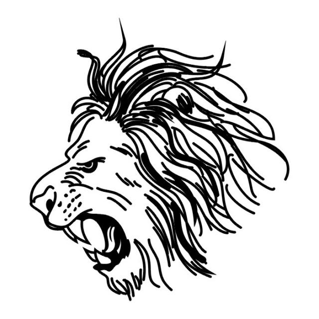 эскизы львов (4)