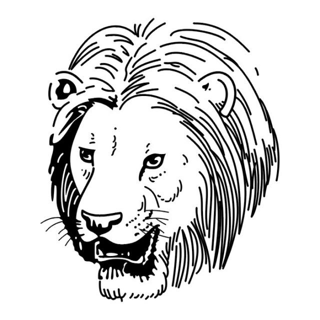 эскизы львов (3)