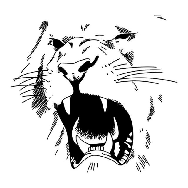 Татуировки эскизы лев — 19 фото