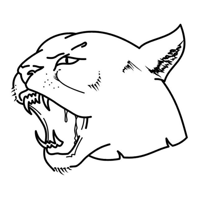 эскизы львов (18)