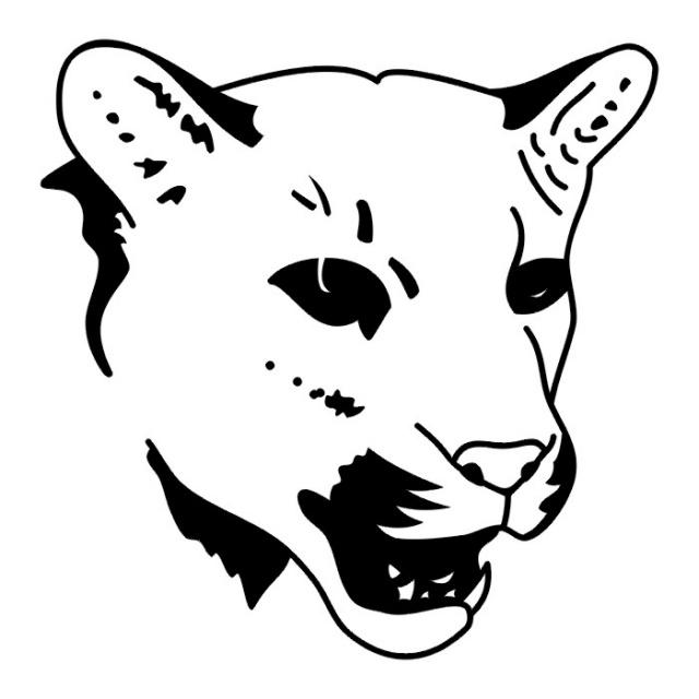 эскизы львов (17)