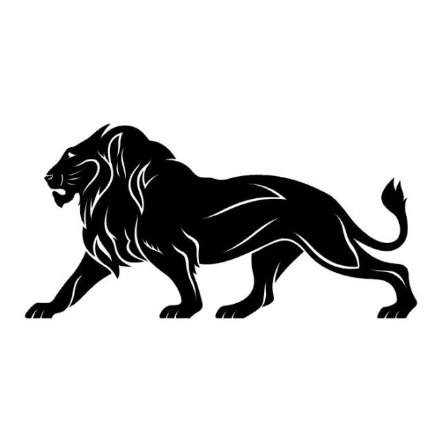 эскизы львов (16)