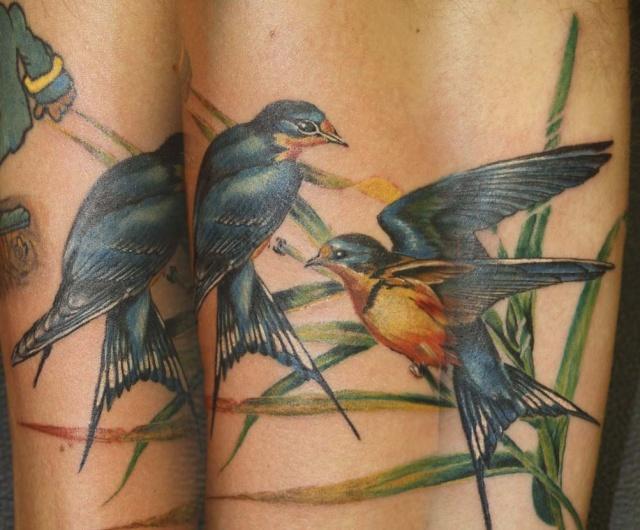 татуировки птицы (2)