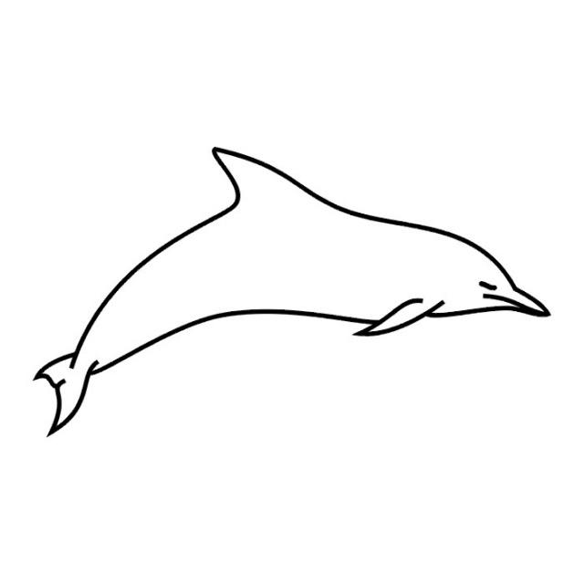 татуировка дельфин (9)