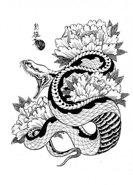 эскизы змей: