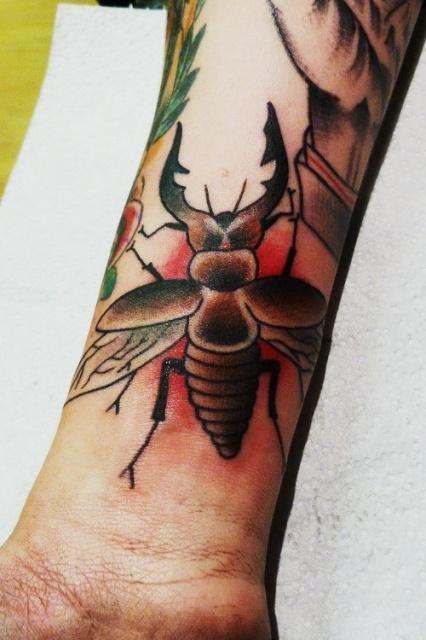 татуировки жуков (2)