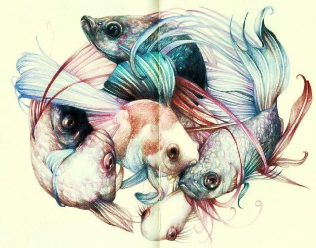 Красивые эскизы животных (5)