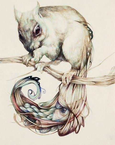 Красивые эскизы животных (2)