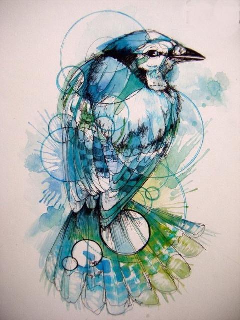 Цветные эскизы птицы (7)