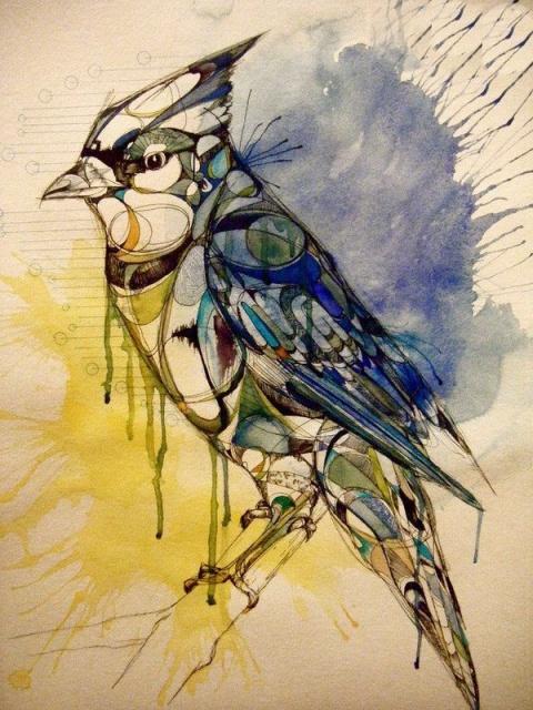 Цветные эскизы птицы (6)