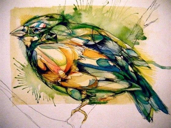 Цветные эскизы птицы (5)
