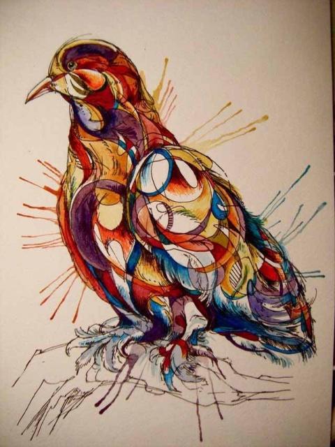 Цветные эскизы птицы (4)