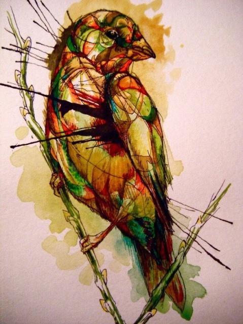 Цветные эскизы птицы (3)
