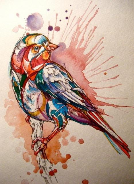 Цветные эскизы птицы (1)