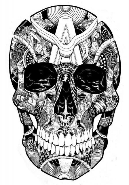 Эскизы черепов (4)