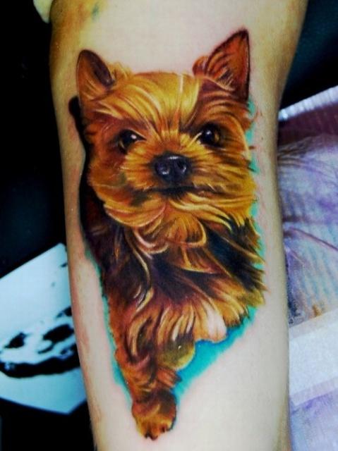 Татуировки собак (3)