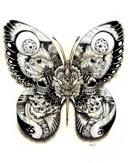эскиз бабочки: