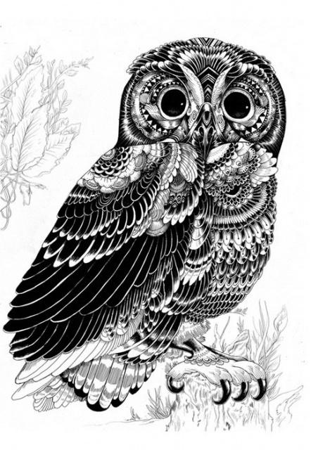 Черно-белые эскизы летающих животных (3)