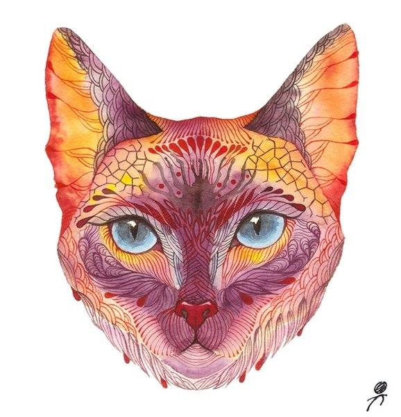 Цветные идеи эскизов татуировок кот