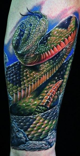 Татуировки змеи 2013 (2)